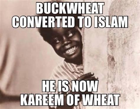 Pictures Of Memes - kareem of wheat