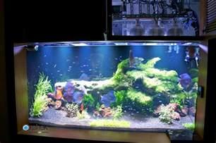 Le Led Aquarium Plantes planted freshwater aquarium lighting orphek