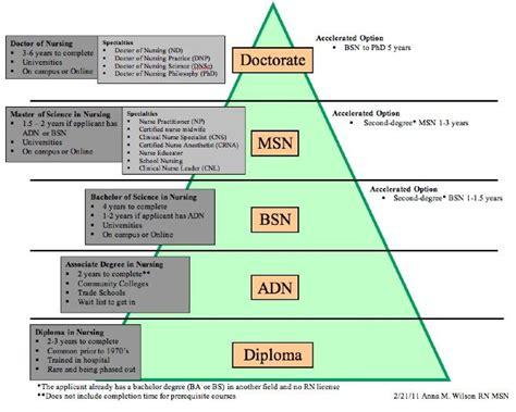 hierarchy  goals    nursing care plan