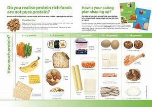 Protein Poster Chart