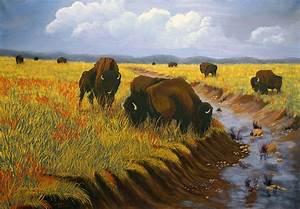 Bison Still Roam The Plains Painting by J Cheyenne Howell