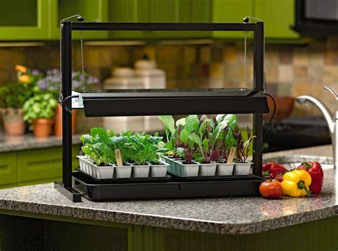 seed starter grow lights grow lights can make you and your plants happier your