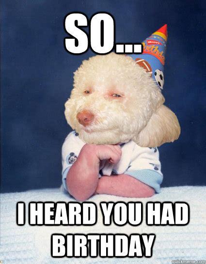Puppy Birthday Meme - i can haz cake and cute boy with dreads birthday dog quickmeme