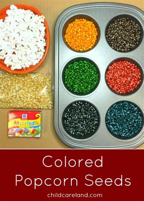 colored popcorn colored popcorn seeds