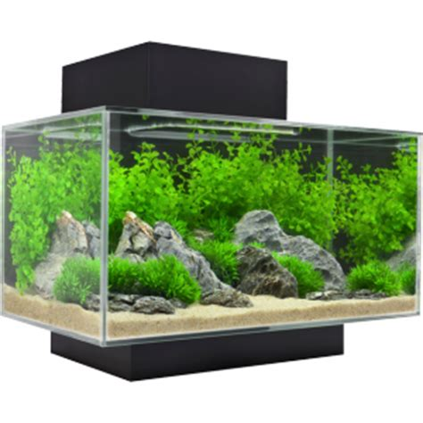 Fluval Edge  23 Litre  Waterworld Aquatics
