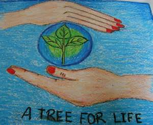 Save Trees Save Life - Viewing Gallery