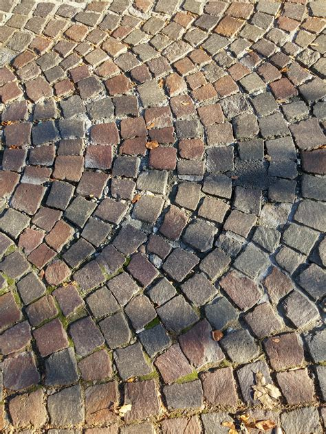 what color is cobblestone free images grass ground texture sidewalk