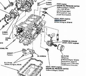 Wiring A Vtec Honda Prelude Knock Sensor In  Wiring  Free Engine Image For User Manual Download