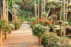 Couvert En Bambou : tunnel en bambou lunatique chez le parc d 39 attractions des enfants image stock image du ~ Teatrodelosmanantiales.com Idées de Décoration