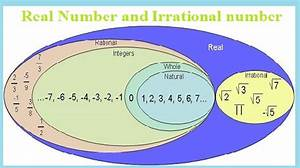 Real Numbers And Irrational Numbers Assignment Help