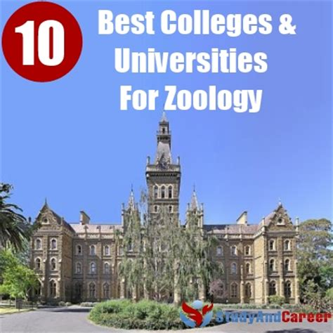 The Gallery For > Zoologist And Wildlife Biologist Colleges. How To Find A Good Web Developer. Civilian Contracting Companies. All 3 Free Credit Reports And Scores. Ira Deduction Phase Out Java Script Developer. Finra Financial Advisor Care Now Doctors Note. Electrician Long Beach Ca Lease Finance Rates. Asp Net Content Management Duties Of Nursing. Knowledge Base Or Knowledge Base