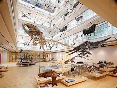 MUSE - Museo delle Scienze - Da Vedere - Musei - Trentino