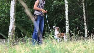 Abtreter Für Draußen : spiele f r die bindung zum hund drau en youtube ~ A.2002-acura-tl-radio.info Haus und Dekorationen