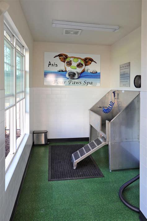 avia apartment home community  apartment amenities