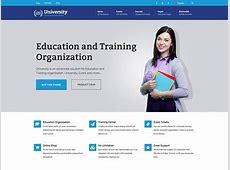12+ Best WordPress University, College and School Themes