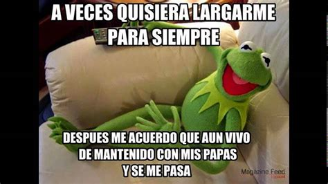 Memes De La Rana Rene - mejores memes de la rana rene youtube