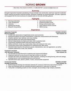 carpenter resume images download cv letter and format With carpenter resume template