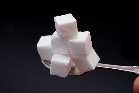 sugar cubes jen s wild science adventures um they both are sugar