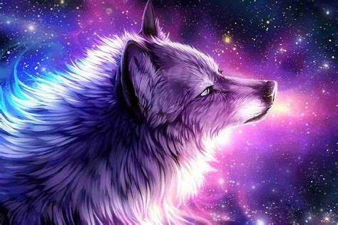 galaxy wolf wallpapers top free galaxy wolf