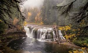 Wondrous, Forest, River, Waterfall, Wide, Wallpaper, 335308