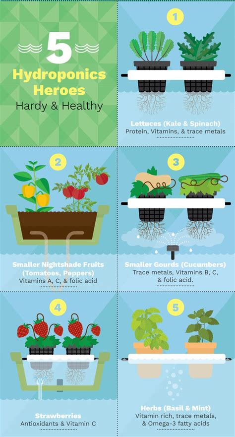 25 best ideas about hydroponics on diy