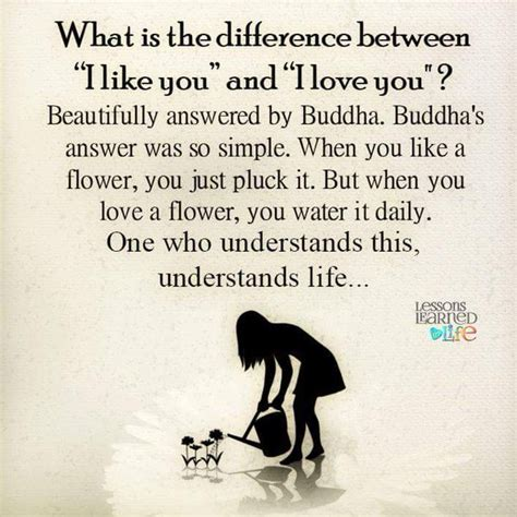 what s the difference between like and lessons learned in lifethe difference between like and
