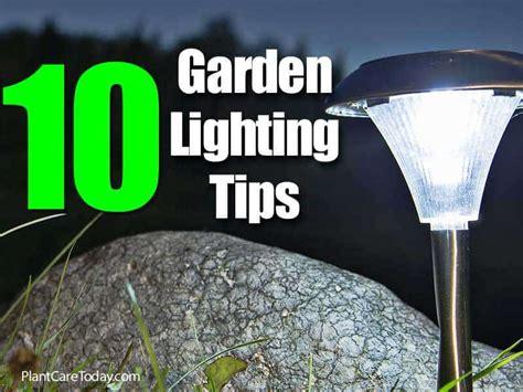 Lighting Tips 10 garden lighting tips 3 how to best use spotlights
