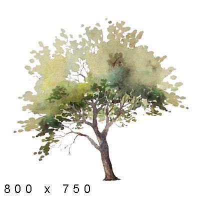 texture png watercolor elements plants landscape sketch