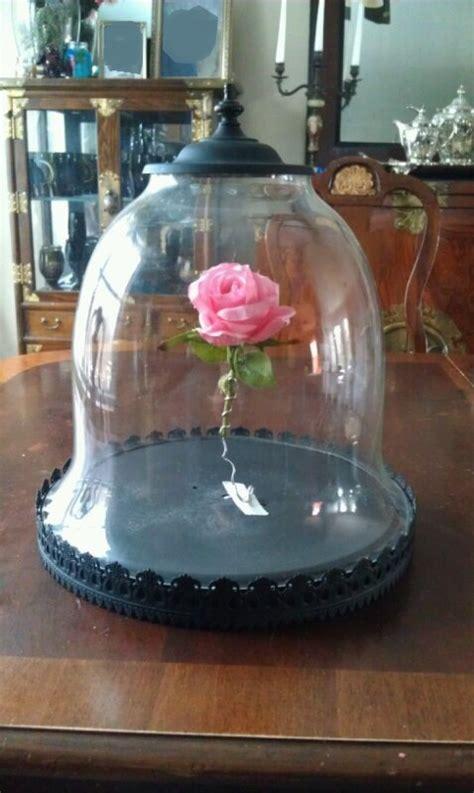 rose  bell jar beauty   beast props