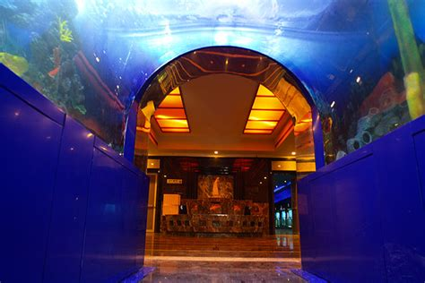 aquarium entry fee taraporewala aquarium mumbai one day picnic spots destinations in india