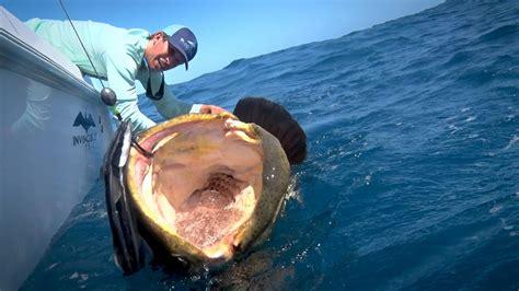 Big Boat Fails by Fishing On Shallow Florida Wrecks