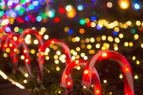 oregon ducks christmas lights the 10 best holiday light displays around portland