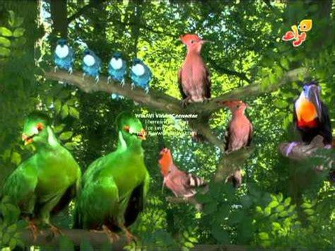 Tittifers In The Garden - birds singing the titiffers