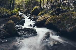Free, Images, Landscape, Nature, Forest, Rock, Waterfall, Creek, Wilderness, Mountain, River