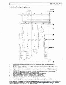 Man Wiring Diagram