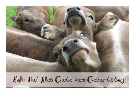 lustige geburtstagskarte kuehe klappkarte kuvert