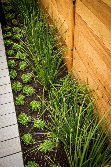 care   wood fence hgtv