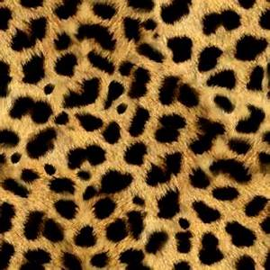 Animal Print Backgrounds and Codes for any Blog web page