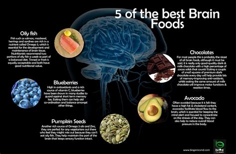 brain foods  improve  memory  concentration