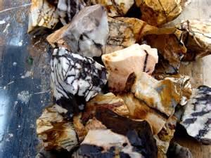 Polishing Petrified Wood Rocks