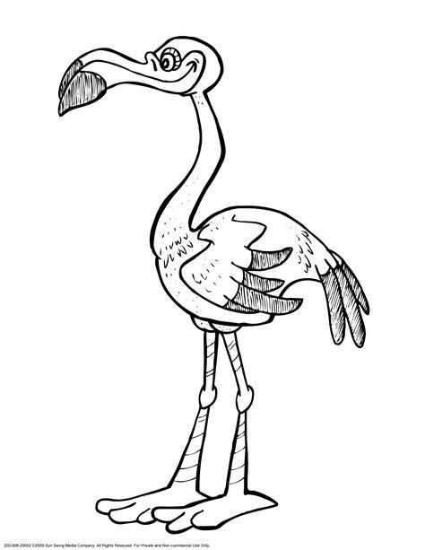 flamingo coloring pages    print
