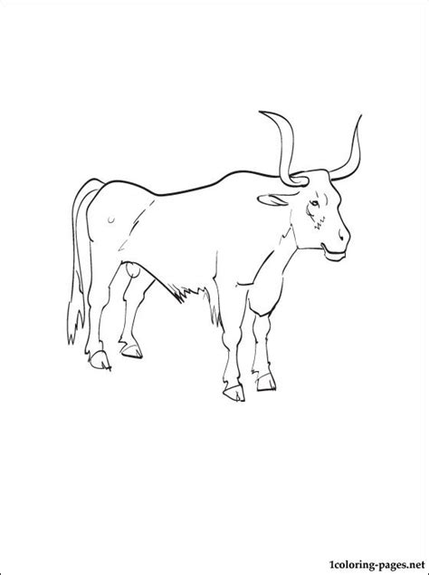 oxen printable  coloring page coloring pages