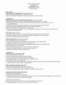 Great Sample Resume Sample Resumes Center For Career And Professional