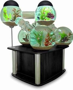Deco Aquarium Zen : mod le d coration d 39 aquarium zen ~ Melissatoandfro.com Idées de Décoration