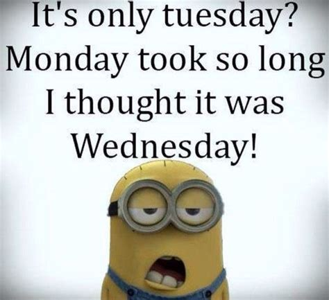 Tuesday Memes Funny - 165 best images about tuesday on pinterest tuesday meme happy tuesday quotes and the hours
