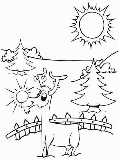 Coloring Kindergarten Printable Deer Template Sheets Santa