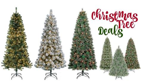 This Year's Best Christmas Tree Deals 2015
