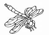 Insects Coloring Pages Children Simple Printable Animals Justcolor sketch template