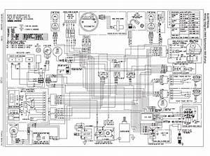 500 Ho Polaris Sportsman 500 Wiring Diagram Pdf  U2013 Wiring
