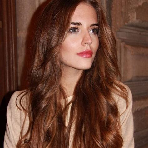Chestnut Brown Hair Color by Best 25 Chestnut Hair Colors Ideas On What Is